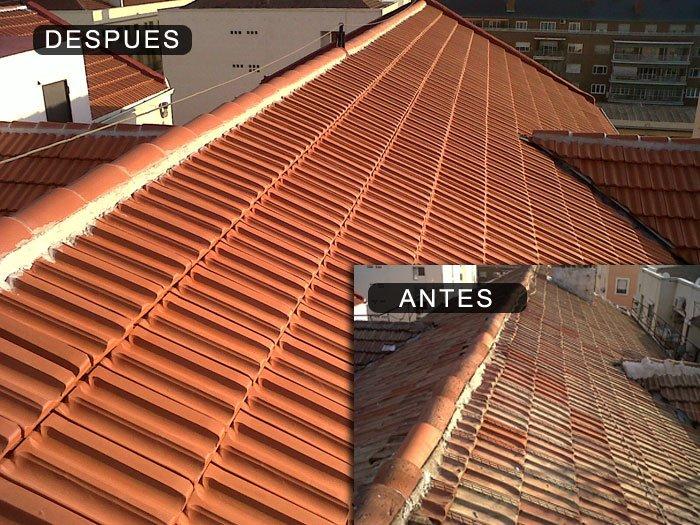 Reparaci n de tejados goteras y cubiertas en madrid - Cubiertas vegetales para tejados ...